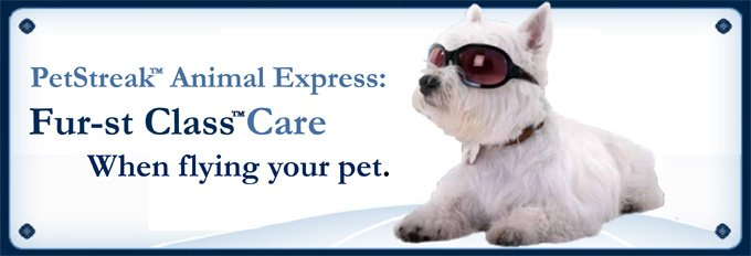 image about Banfield Coupons Printable identified as Banfield animals offer you Alaska Airways